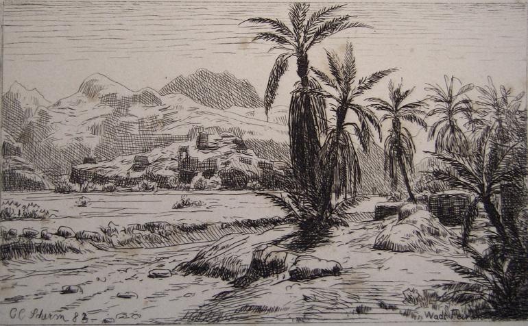 C.C.Schirm Wadi Feiran
