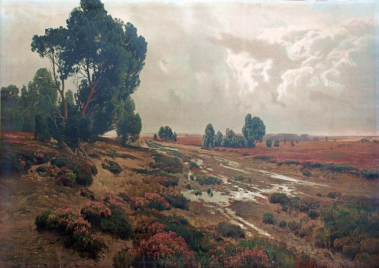 C.C.Schirm Moorheide